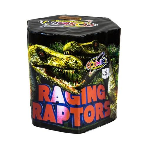 Raging Raptors cake fireworks